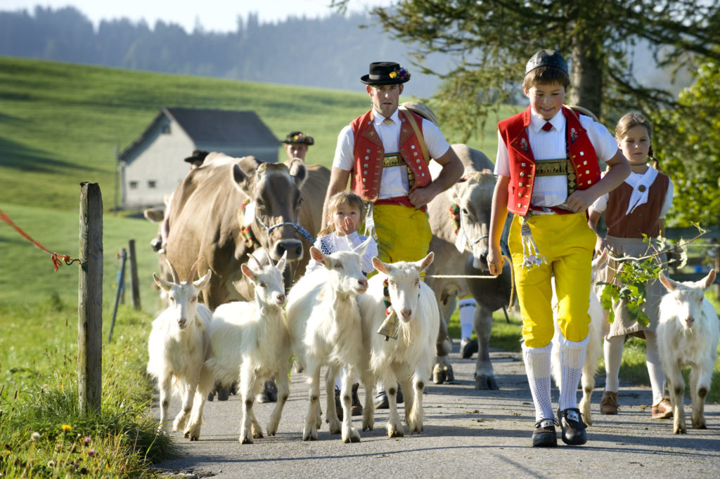 Processions to the alpine pastures